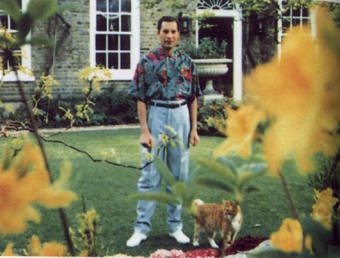 L'ultima foto di Mercury - Primavera 1991