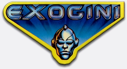 exogini logo