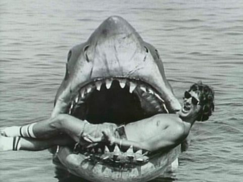 LO SQUALO – Steven Spielberg – (1975)