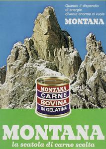 montana 1973