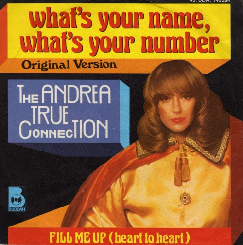 true collection - what's your namewhat's your number copertina
