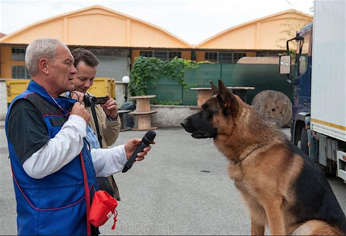 commissario rex addestratore cane
