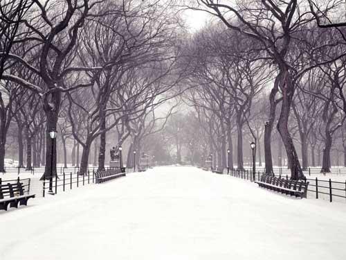 ondata di freddo 1971 nevicata record