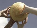 GIOCHI-apeto-anni-70-palla-prigioniera-palla-avvelenata
