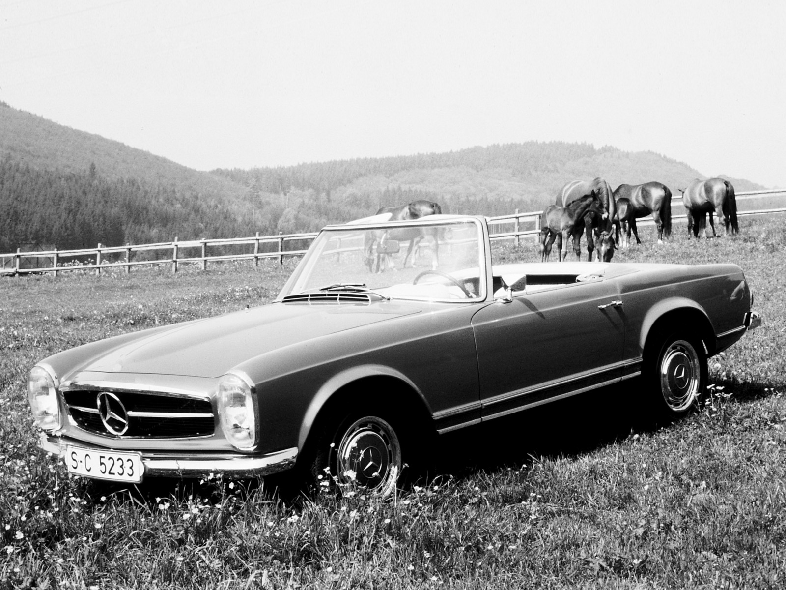 Mercedes-Benz_250SL_1966