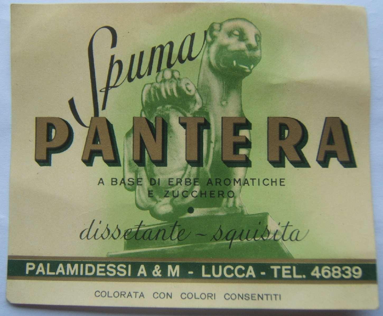 spuma pantera palamidessi lucca