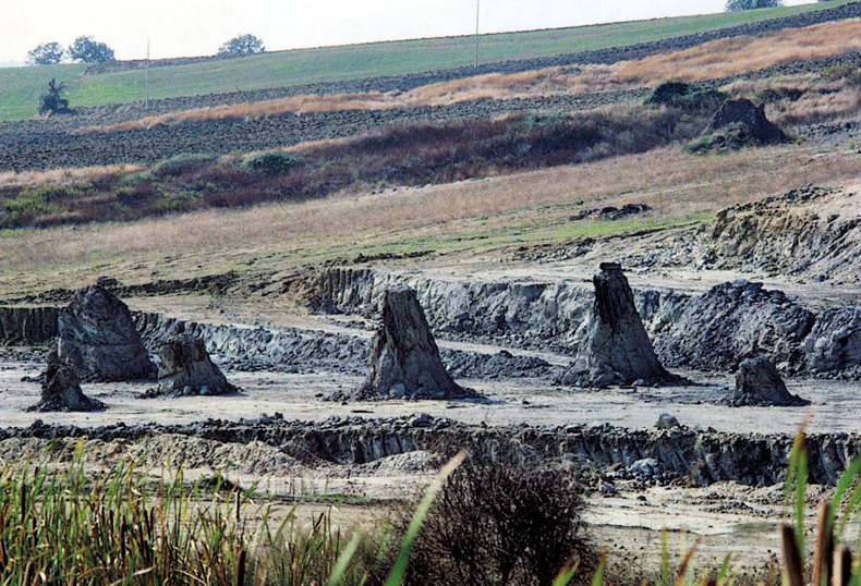 La foresta fossile di Dunarobba