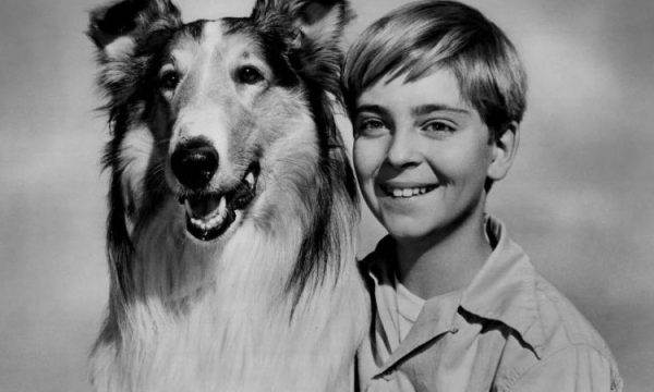 TOMMY RETTING – ( Jeff Miller prima serie Lassie 1954/1957 )