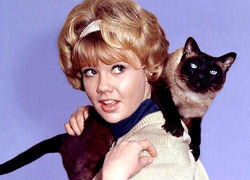 HAYLEY MILLS (Film Disney anni '60) – Come era e Come è