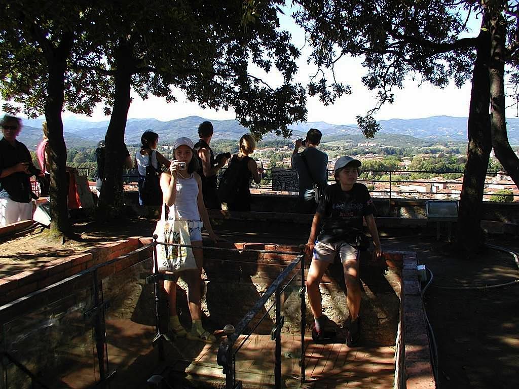 08 Torre Guinigi top