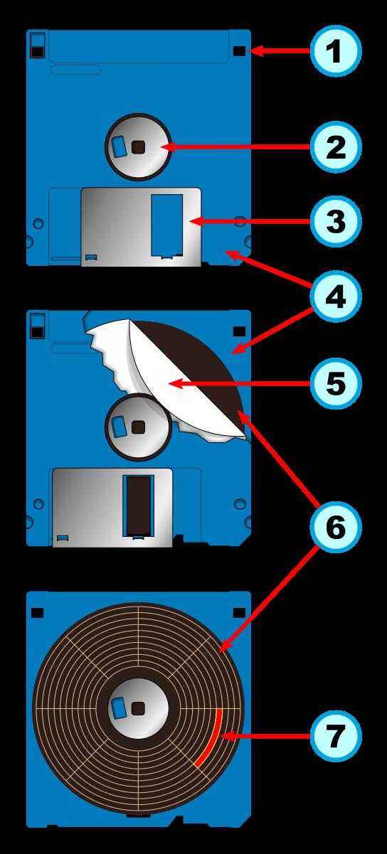 Floppy_disk_interno