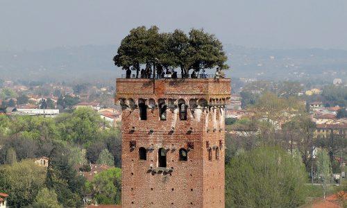 Misteri e Curiosità d'Italia: TORRE GUINIGI con alberi – (Lucca)