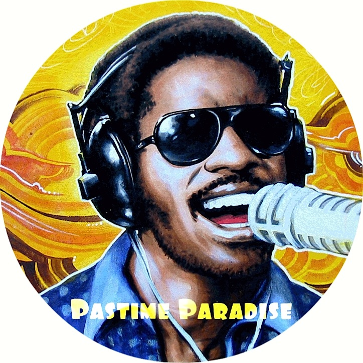 pastime_paradise_steve_wonder