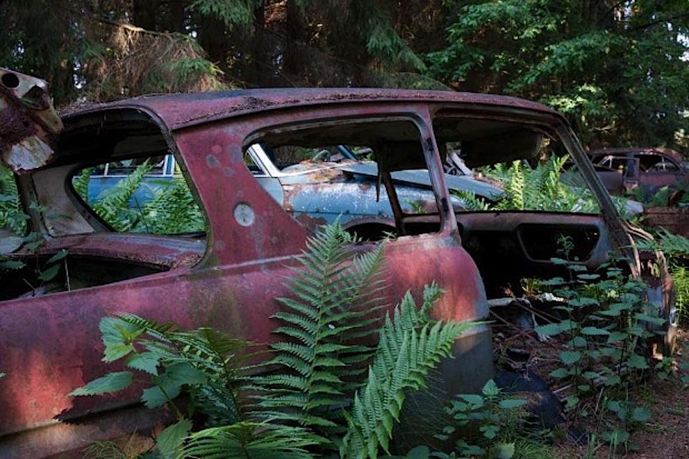 chatillon auto abbandonate nella foresta