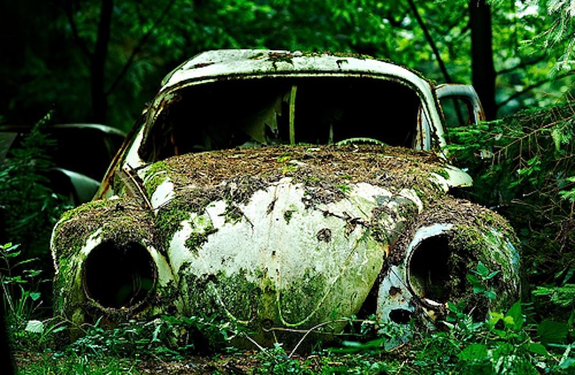 chatillon foresta belgio auto