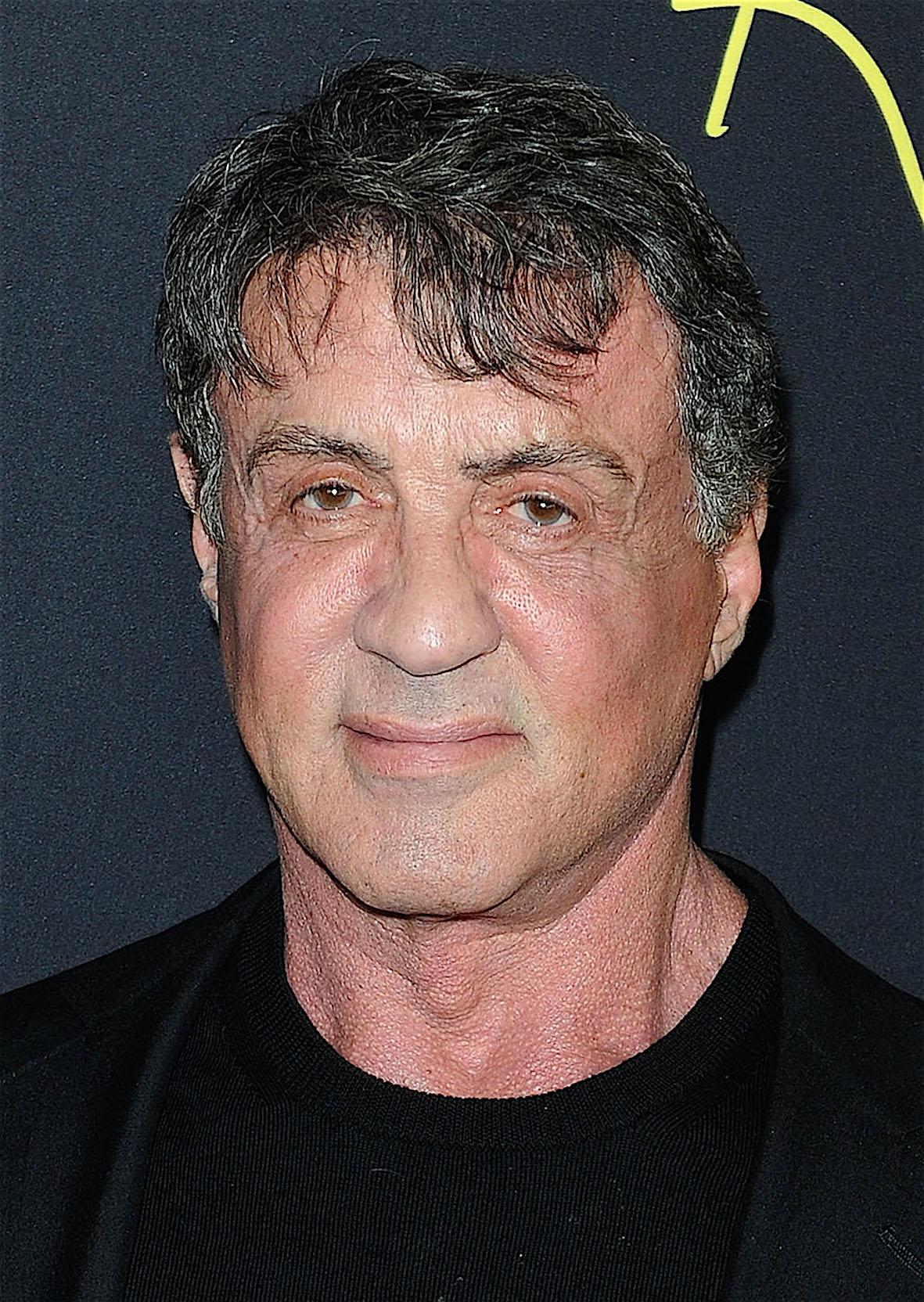 Sylvester Stallone 2014