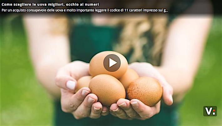 come scegliere le uova migliori